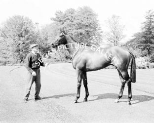 Sir Ivor with Lester Piggott (553-05)